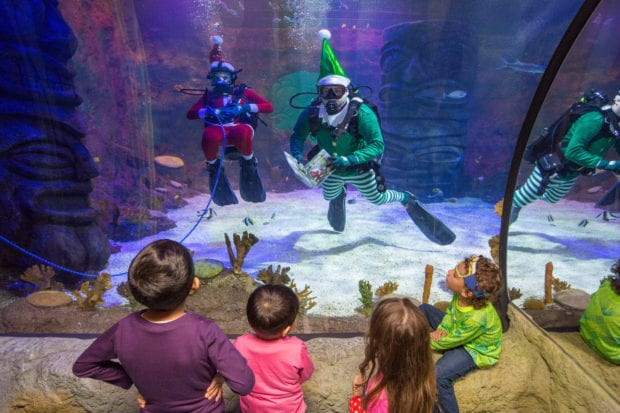 Sea Life Orlando holidays