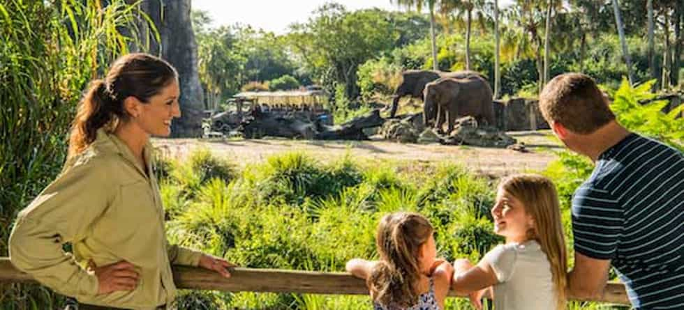 New 'Caring For Giants' tour gets guests closer to Disney's Animal Kingdom elephants