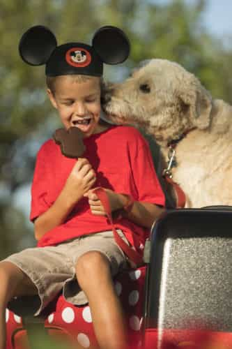 Walt Disney World hotels welcome dogs