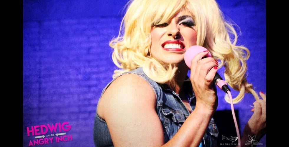 Hedwig is ready to rock your world!,/i>