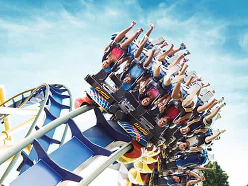 Busch Gardens Tampa Introduces Year Round Quick Queue Pass For 299