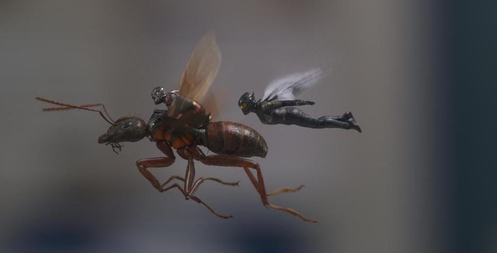 Ant-Man and the Wasp fly by.