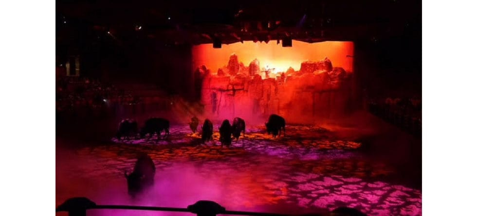 Buffalos to be replaced in Buffalo Bill's Wild West Show at Disneyland Paris