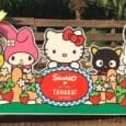 Hello Kitty pumpkin patch pops up once again in Irvine, California