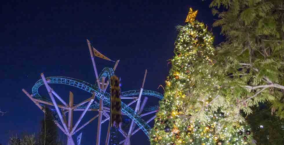 Christmas Town Florida.Celebrate Christmas Every Day At Busch Gardens Tampa Bay S