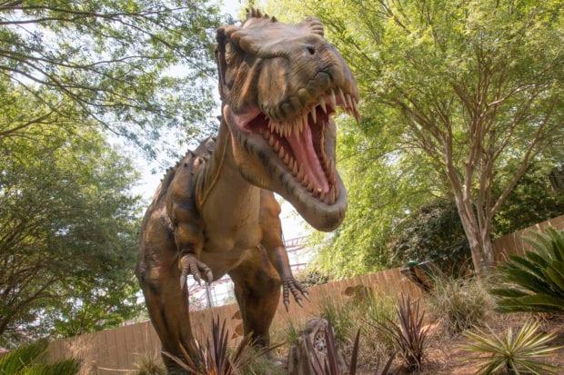 Wild Adventures Theme Park Dinosaurs Explore T-rex