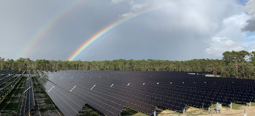 Walt Disney World's new 270-acre solar facility now online