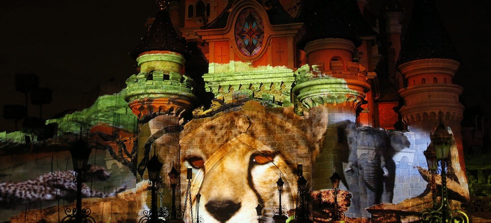 Disneyland Paris to debut Disneynature-themed pre-show for a limited time