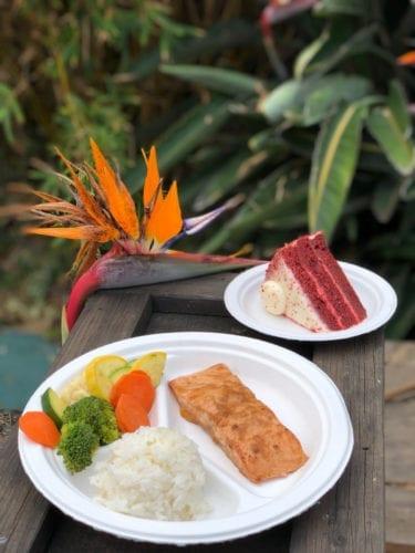 SeaWorld polystyrene foam dinnerware