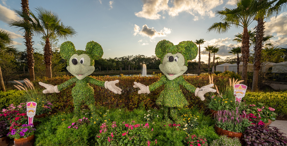 four seasons resort orlando flower & garden
