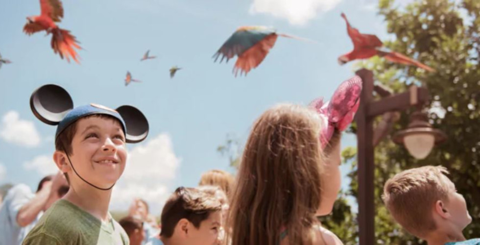 Disney's Animal Kingdom Party for the Planet 2019