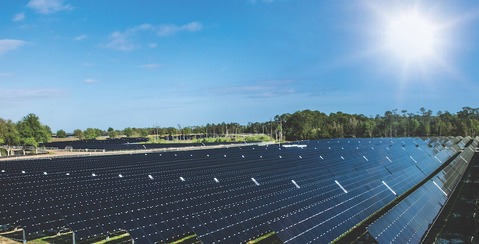 walt disney world solar panels