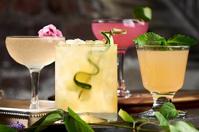 havana nights cocktails