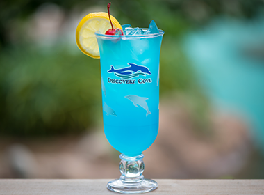 discovery cove tropical lemonade