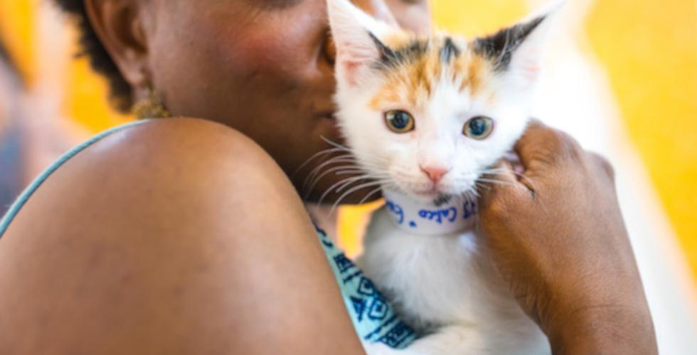 CatCon 2019 kitten adoptee