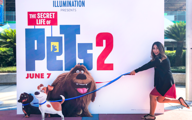 Movie Review The Secret Life Of Pets 2 Is Fur Tastic Fun