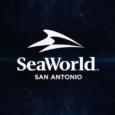 SeaWorld San Antonio teases new attraction for 2020