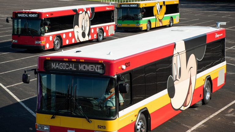 Walt Disney World Sensational Six buses