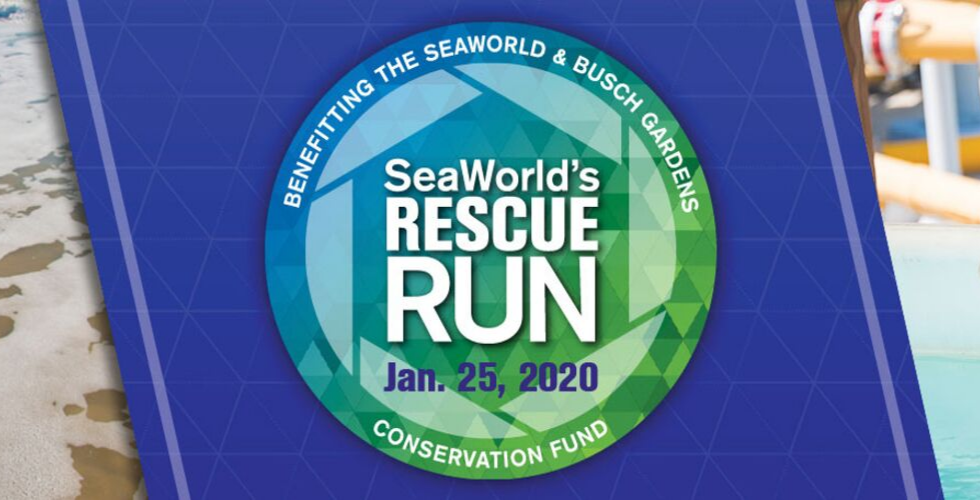 seaworld rescue run