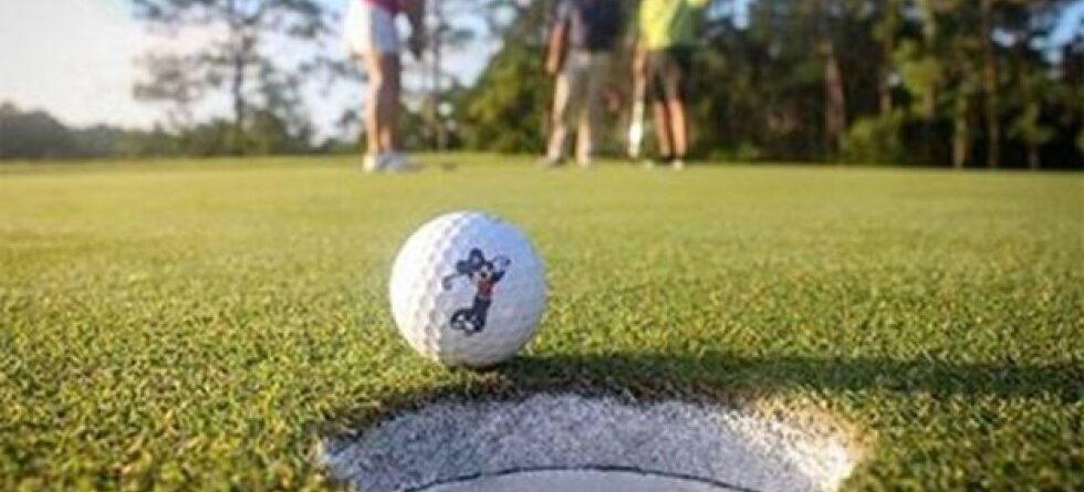 Walt Disney World launches Disney Player's Club 2020 golf membership