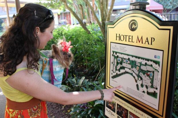 rosen hotels