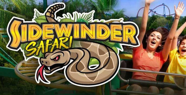 sidewinder safari