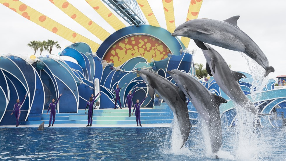 dolphin protection act