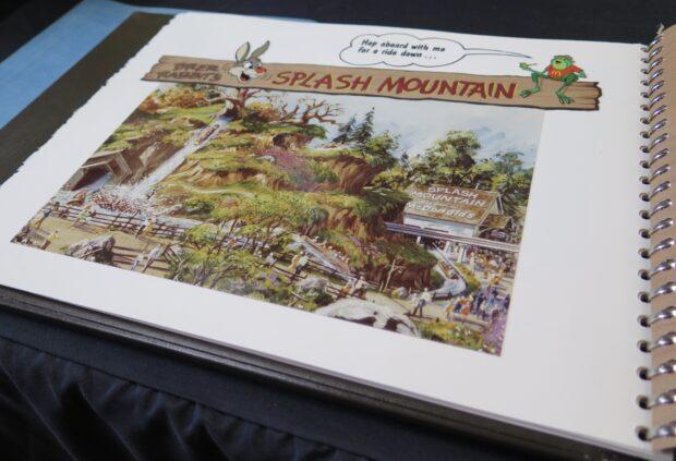 disneyland auction, disneyland 65th anniversary, splash mountain
