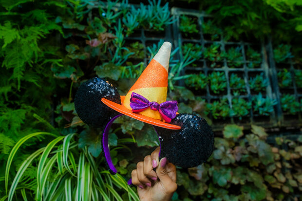 witch hat ears