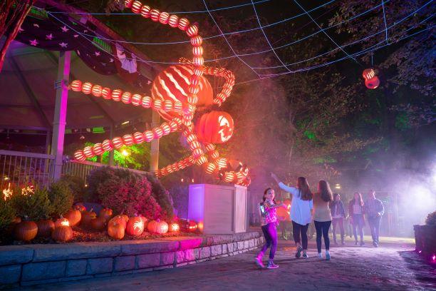Pumpkin sculpture display at Silver Dollar City