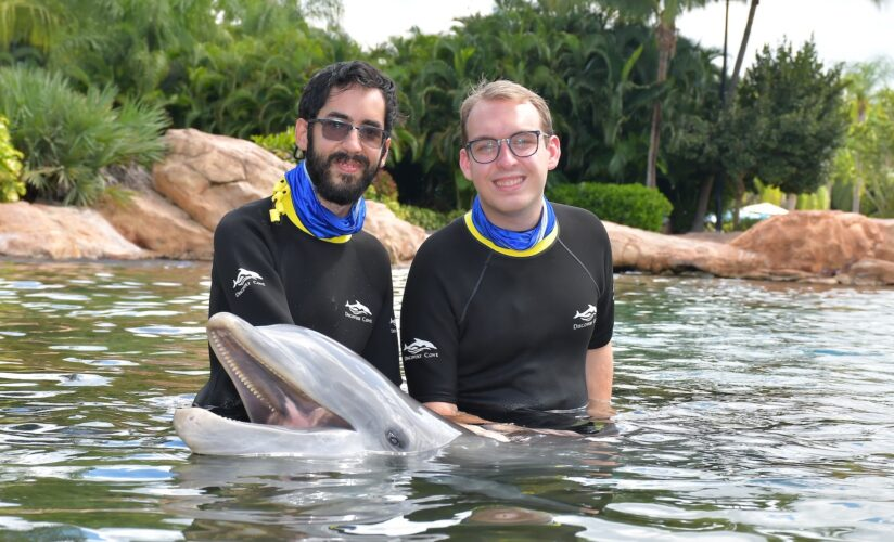 Petting a dolphin at Discovery Cove