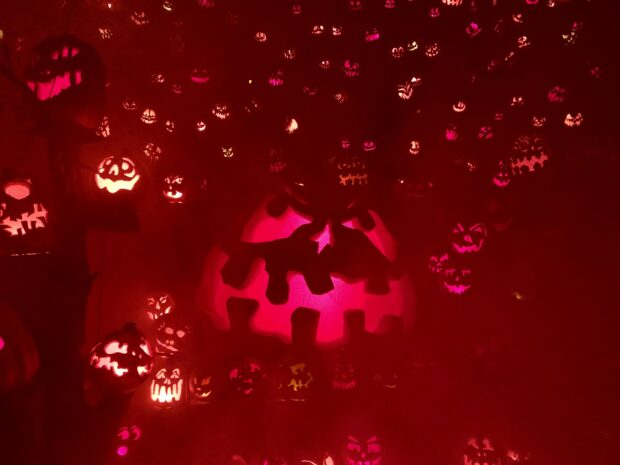 Jack-O-Lantern Spectacular, Roger Williams Park Zoo, Providence, Rhode Island