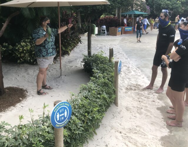 birds at Discovery Cove