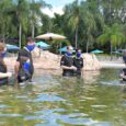 Our visit to Discovery Cove during the pandemic