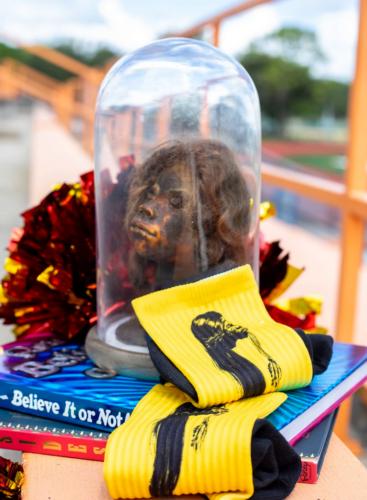 Ripley's Believe It Or Not, online store, Shrunken Head Socks