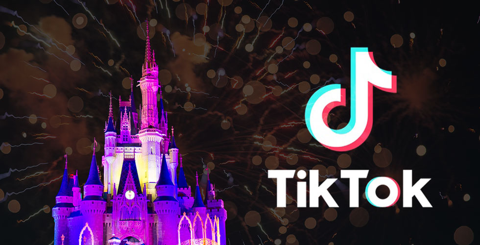 Walt Disney World Tiktok videos