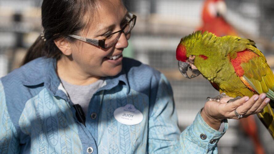 Disney cast member and a bird