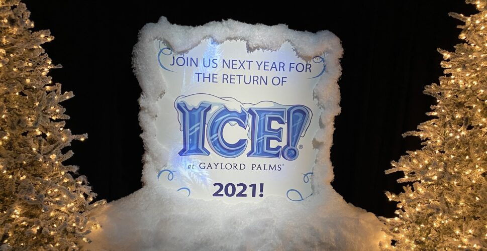 Ice will return to Gaylord palms in 2021.