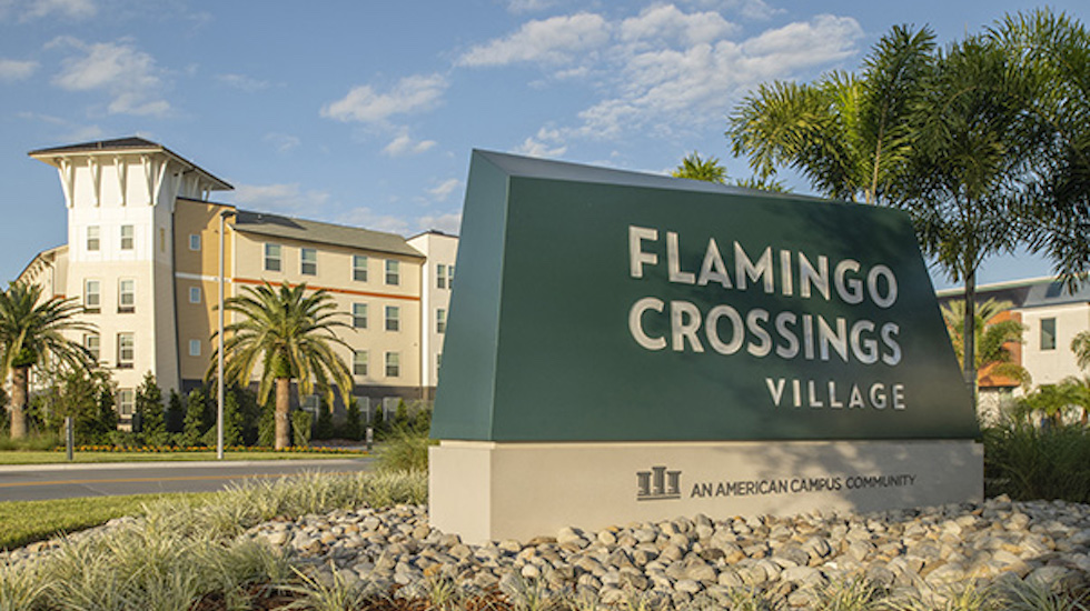 flamingo crossings