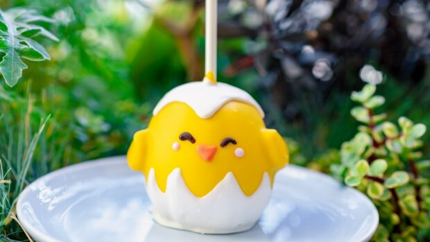 Baby chick candy apple at Downtown Disney District