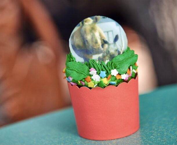 Animal Kingdom Mother's Day cupcake