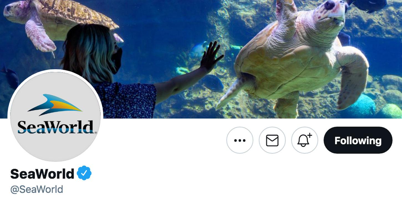 SeaWorld Socials on Twitter.