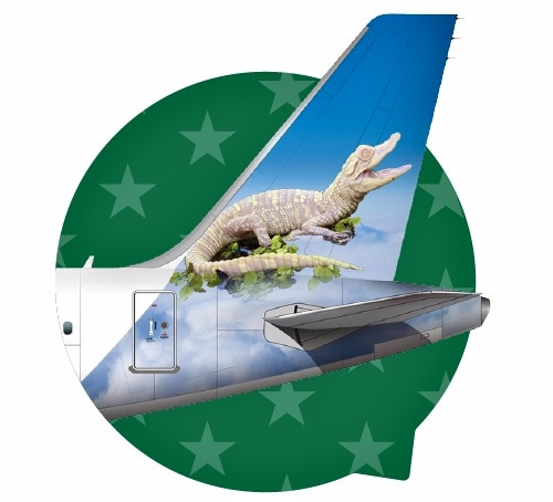 Frontier Airlines tail campaign - Flurry