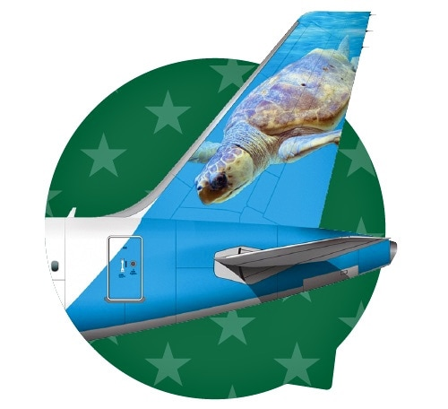 Frontier Airlines tail campaign - Ted