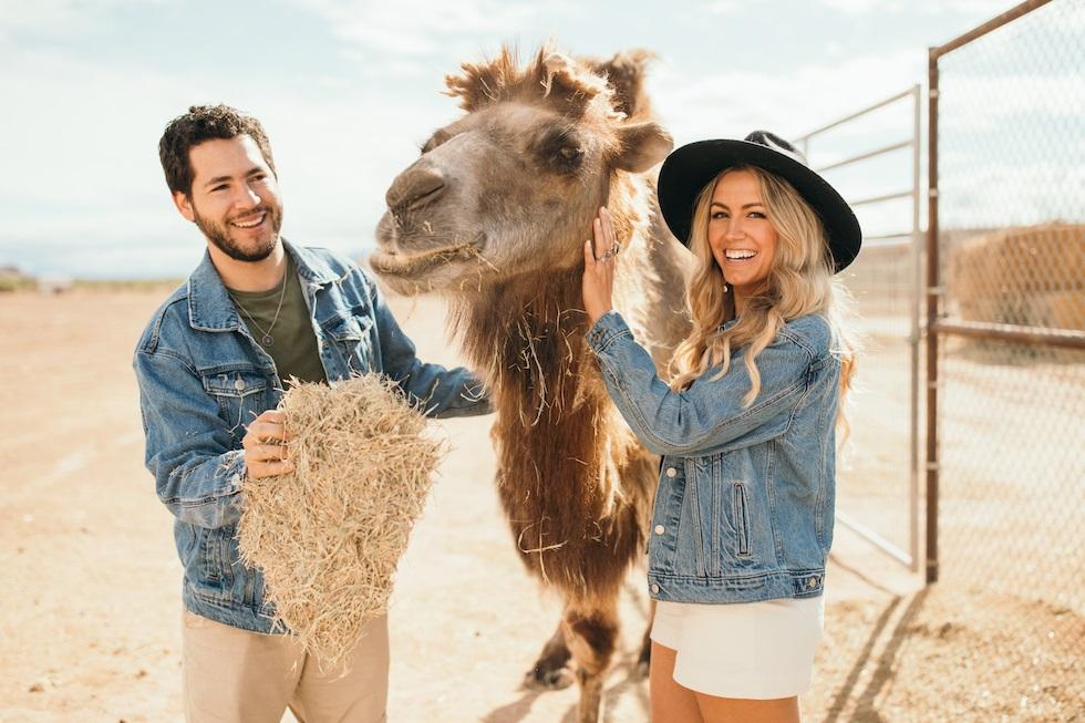 Camel Safari ranch