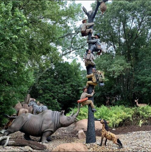 trapped safari