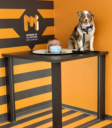 Museum of Illusions photo op with dog