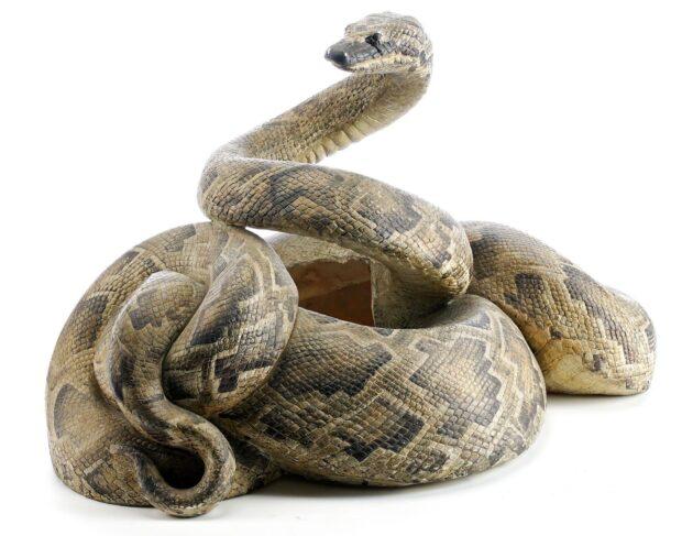 Prop Store Auction - Snake Surprise