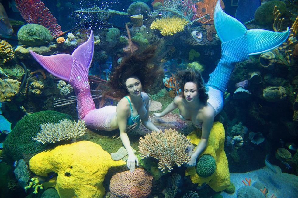 Sliverton Casino Hotel mermaid swim