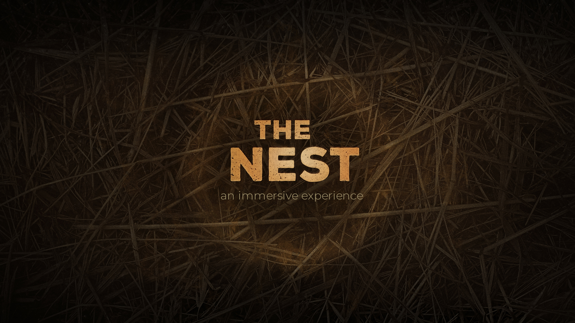 the nest immersive experience